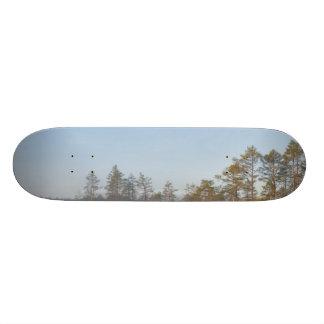 Sunrise at Viru Bog, Estonia Skate Board Decks