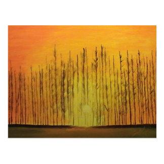 Sunrise Behind the Trees Postcard