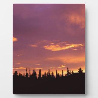 Sunrise Boreal Forest Alaska Plaques