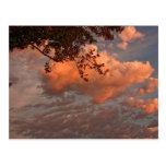 Sunrise clouds, post card