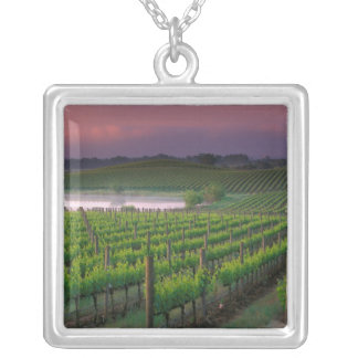 Sunrise color in the distant fog behind silver plated necklace