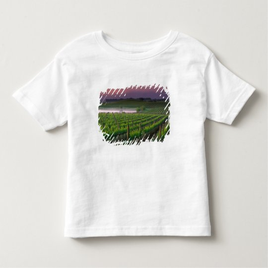 Sunrise color in the distant fog behind toddler t-shirt