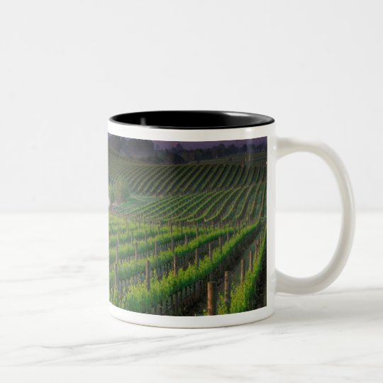 Sunrise color in the distant fog behind Two-Tone coffee mug