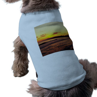 Sunrise Pet Clothing