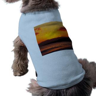 Sunrise Pet Shirt