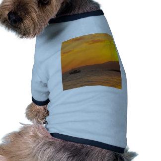 Sunrise Dog Clothes