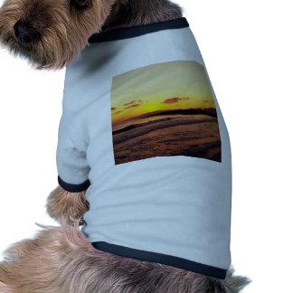 Sunrise Pet Clothes