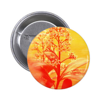sunrise Flowers phptgraphed by Tutti Pinback Button