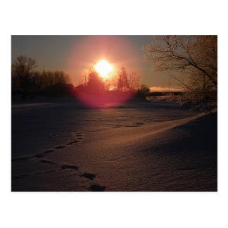 Sunrise Glow Postcard