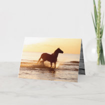 Sunrise Horse in the Water Horse Greeting Card