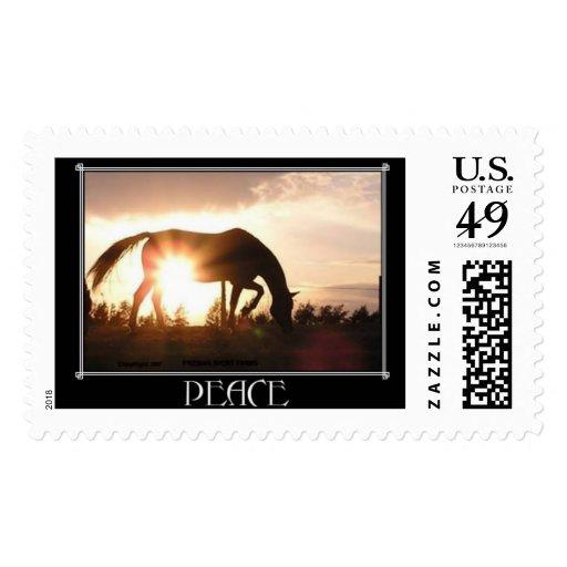 SunRise Horse Postage