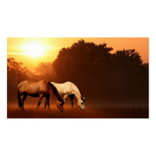 Sunrise horses business card