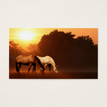 Sunrise horses business card