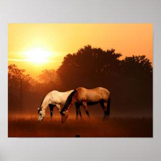 Sunrise horses print