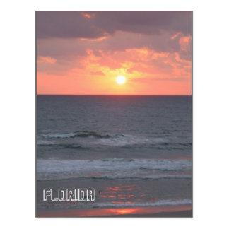 Sunrise in Florida Postcard