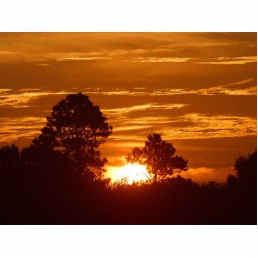 Sunrise In Louisiana Photo Sculpture