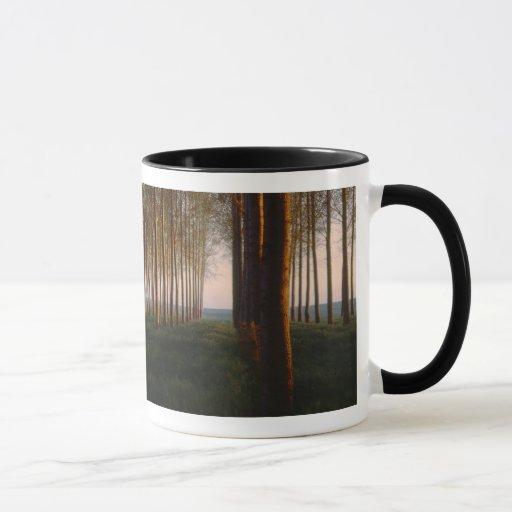 Sunrise in Othello Poplar Grove Mug