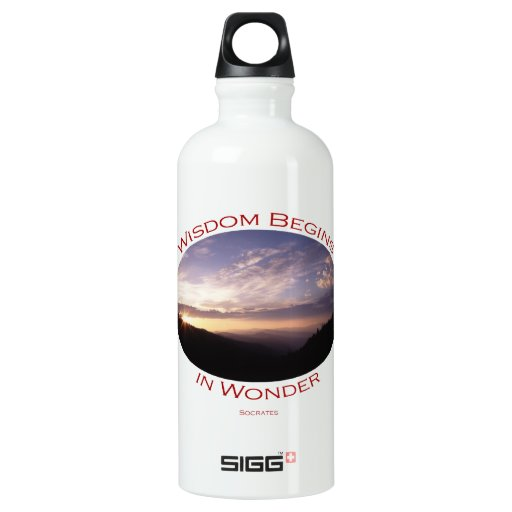 sunrise in the smoky mountains SIGG traveler 0.6L water bottle