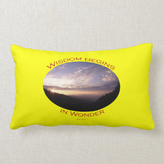 sunrise in the smoky mountains throw pillow