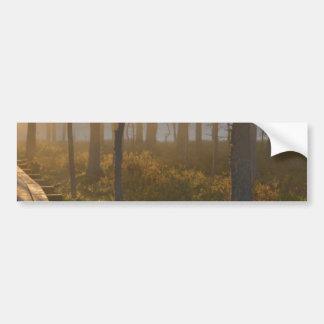 Sunrise in Viru bog at Lahemaa National Park Bumper Sticker