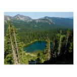 Sunrise Lake from Above at Mount Rainier Park Postcard
