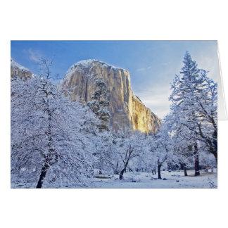 Sunrise light hits El Capitan through snowy Card