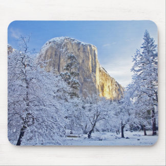 Sunrise light hits El Capitan through snowy Mouse Pad