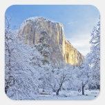 Sunrise light hits El Capitan through snowy Square Stickers