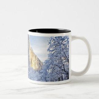 Sunrise light hits El Capitan through snowy Two-Tone Coffee Mug