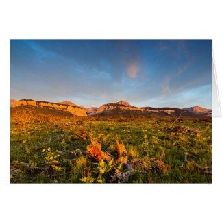 Sunrise Lights Blackleaf Canyon 2 Cards