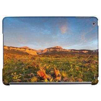Sunrise Lights Blackleaf Canyon 2 iPad Air Cover
