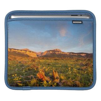 Sunrise Lights Blackleaf Canyon 2 iPad Sleeves