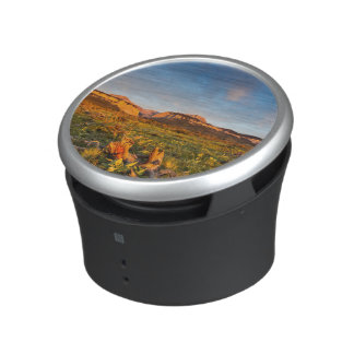 Sunrise Lights Blackleaf Canyon 2 Speaker