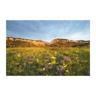 Sunrise Lights Blackleaf Canyon Canvas Print