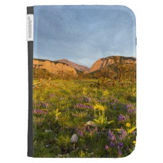 Sunrise Lights Blackleaf Canyon Kindle 3G Covers
