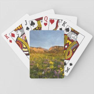 Sunrise Lights Blackleaf Canyon Deck Of Cards