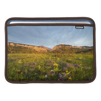 Sunrise Lights Blackleaf Canyon Sleeve For MacBook Air