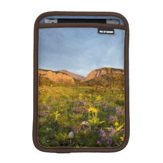 Sunrise Lights Blackleaf Canyon iPad Mini Sleeve