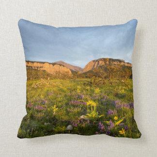 Sunrise Lights Blackleaf Canyon Pillow