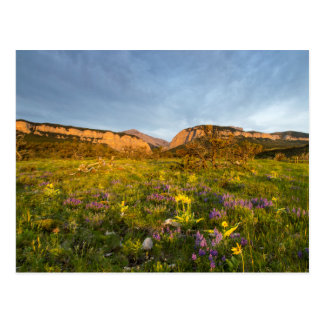 Sunrise Lights Blackleaf Canyon Postcard