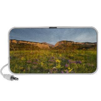Sunrise Lights Blackleaf Canyon Laptop Speakers