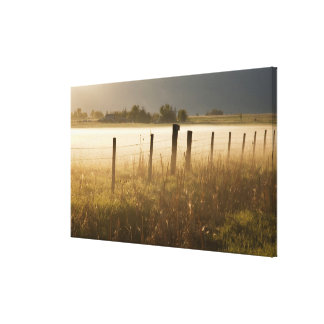 Sunrise lights fog along fence near Charlo Canvas Print