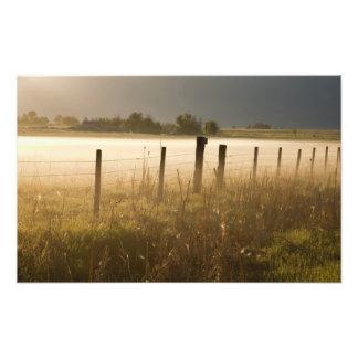 Sunrise lights fog along fence near Charlo Photo