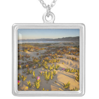 Sunrise lights the sand dunes and sea fig at silver plated necklace