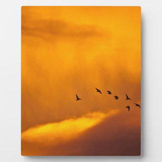 Sunrise Morning Flight Display Plaque
