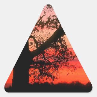 Sunrise Oak Tree Dawn Oldham County Kentucky Triangle Sticker