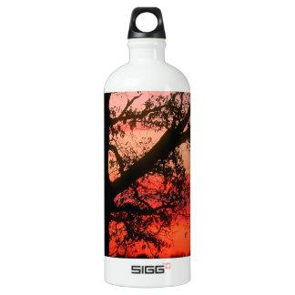 Sunrise Oak Tree Dawn Oldham County Kentucky Water Bottle