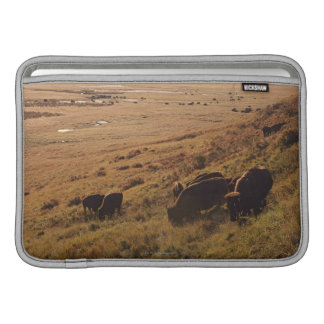 Sunrise On Bison Sleeve For MacBook Air