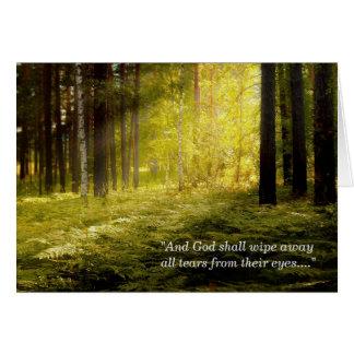 Sunrise on Forest Ferns Sympathy Card