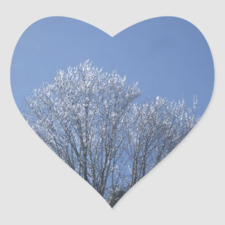 Sunrise on Ice Tipped Tree Tops Heart Sticker